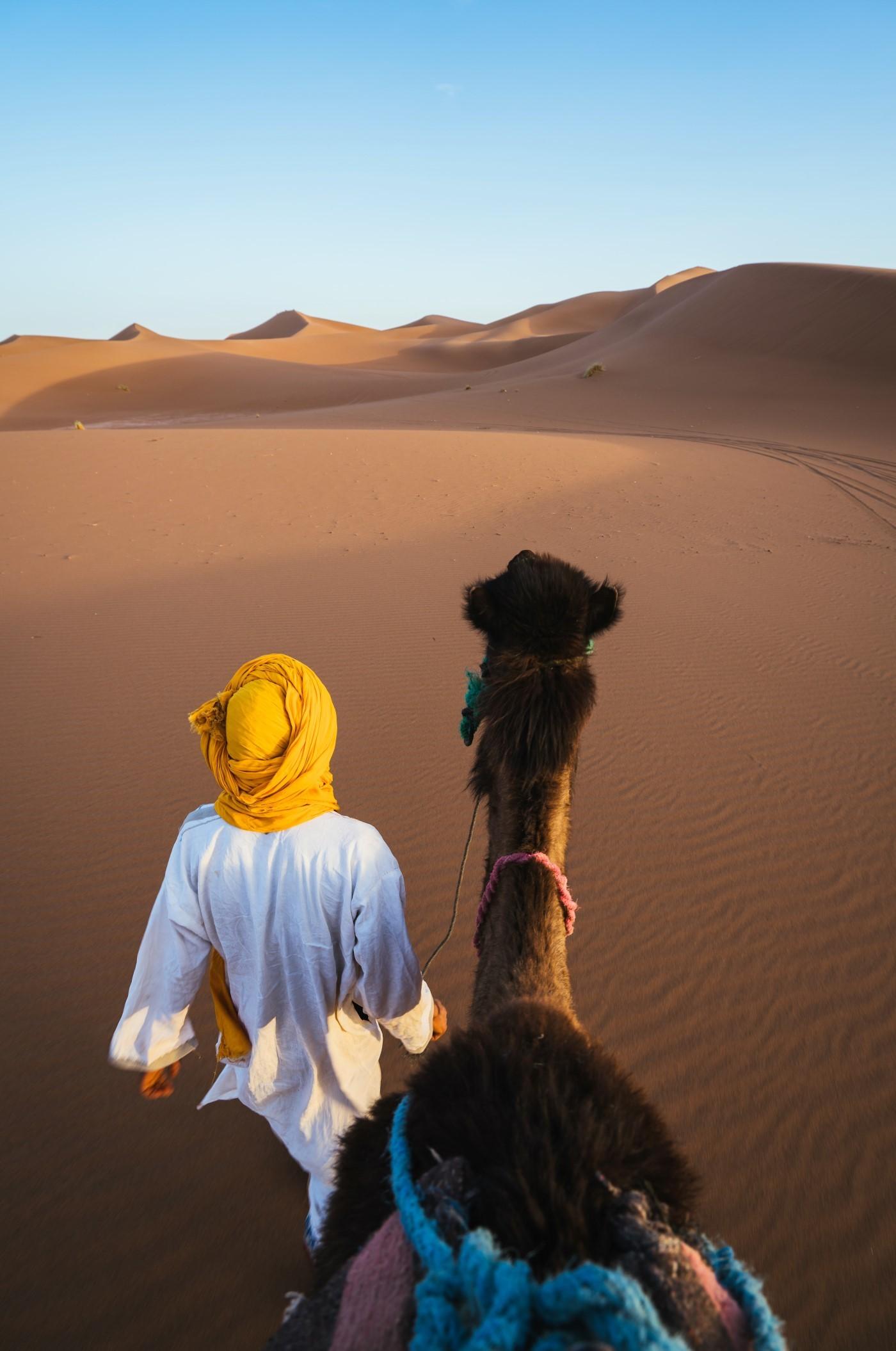 Kamelsafari guide 1400-2110 Marsa Alam Abenteuer