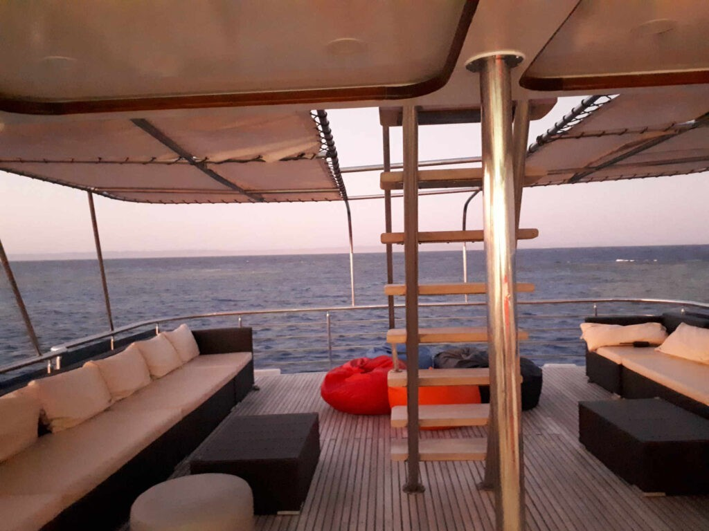 Safari Rotes Meer
